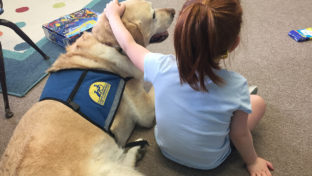 Pecos the facility dog lies on the carpet. A little red-headed girl sits with her arm on him, her hand on his head.